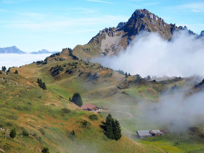 Schynige Platte Switzerland Mountain Landscape Nature Sky Scenics Beauty In Nature Tranquility Outdoors Tranquil Scene No People Mountain Range Day Peak Grass