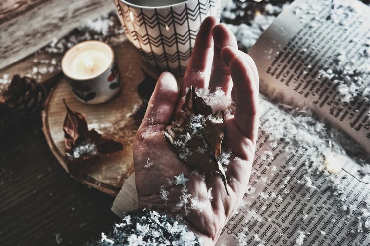 High angle view of person hand holding dry leaf and snow on table