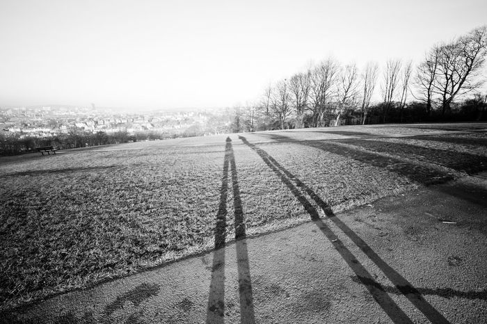 panorama view from a park of Sheffield, England Winter Bare Tree City Clear Sky Cold Day Environment Field Land Landscape Long Shadow - Shadow Nature No People Outdoors People Shadow Plant Road Rural Scene Scenics - Nature Sky Tranquil Scene Tranquility Transportation Tree Ultra Wide Angle