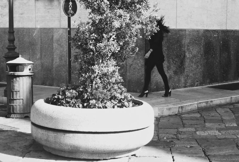 More on https://www.facebook.com/leccecomelacantoio/ First Eyeem Photo Streetphotography Bnw Leccecomelacantoio Lecce Lecce City Humansoflecce Walking