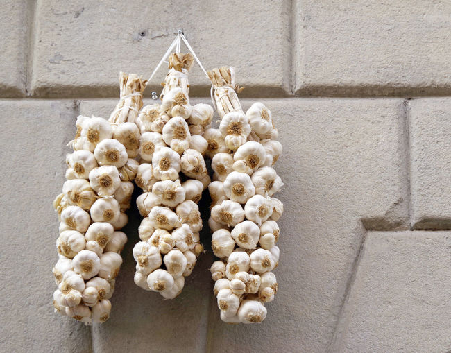 Low angle view of garlic bulbs hanging on wall