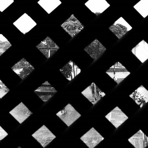 ☔💒 😴 Photo Photographer Photograph Foto Fotografia Instagood Instafoto Instalike Instaphoto Instaphotography Light Luz Sombra Shadow Picture Instapicture Portrait Instaportrait Instablackandwhite Blackandwhite Pretoebranco Igreja Igrejasaofrancisco Church Joaopessoa paraiba brazil centrohistorico