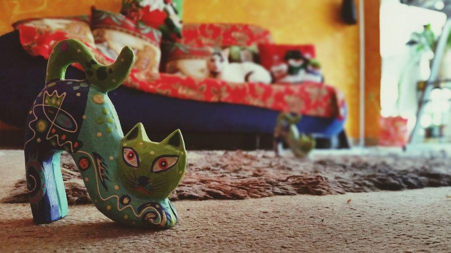 01. One cat Cat