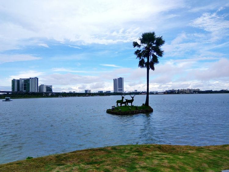 Kolkata Eco Park Nature Tree Lake View Travel Destinations Water Sea City Travel Urban Skyline Outdoors Tree Nautical Vessel Sky Cityscape Nature Sailing No People Day