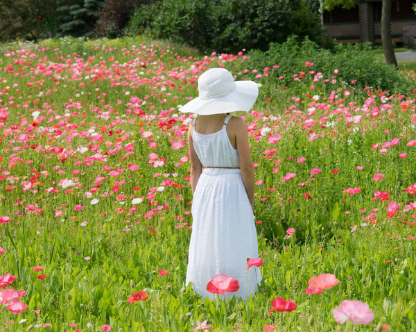 In a field of poppies Beauty In Nature Blooming Children Photography Field Flower Freshness Girl Girl In Flowers Grass Growth Nature Petal Poppy Field Poppy Flowers Standing