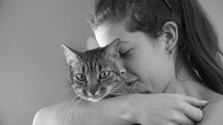 Love without boundaries 😋 Domestic Cat Animal Head  Looking At Camera Cat Cat Eyes Pets One Animal Domestic Animals Pet Portraits Indoors  Feline Animal Animal Head  Happy Anímals
