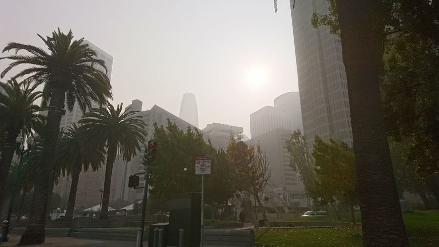 Gloomy San Francisco. Sun Against The Sun San Francisco SF California CA United States USA Downtown Financial District  Doom Gloomy Hazy  Haze California Wildfires Mysterious Mystery Dystopia Dystopian Urban Landscape Cityscape