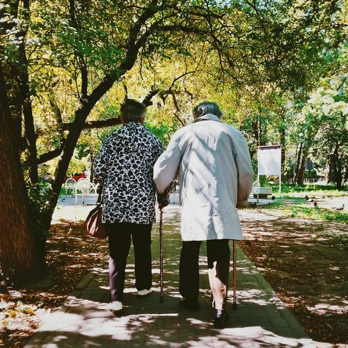 Rear view of couple walking on pathway