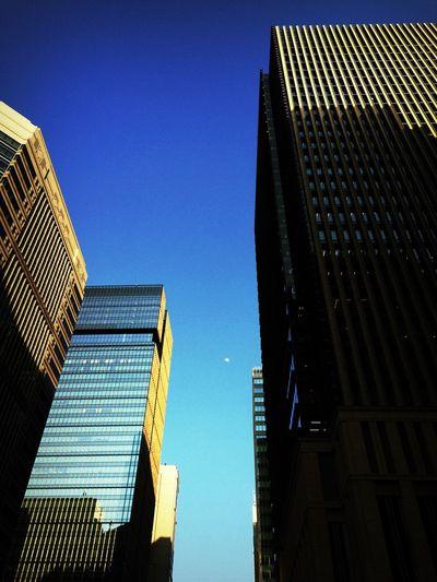 ビルの合間に浮かぶ月。 Moon Daytime Daytime Moon Building Buildings Bluesky