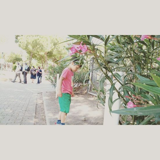 VSCO Vscocam Vscogood Selfie Selfies Sea Pic Picture Pictureoftheday Rcnocrop València Paseo Love Kiss Baby Flower Flor Instagood Insta Instagram Instadaily Marrakech Traveling Travel