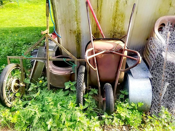 Old Utensils Wheelbarrow Water Grass Plant Green Color Rusty Gardening Glove Gardening Equipment