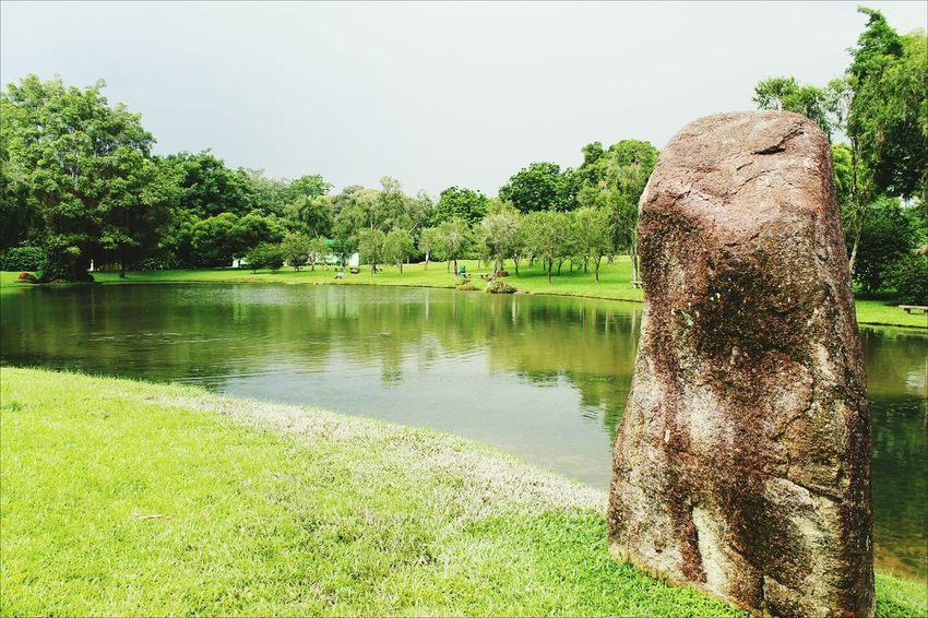 Outdoors Beauty In Nature Green Color Lake Singapore Breathing Space