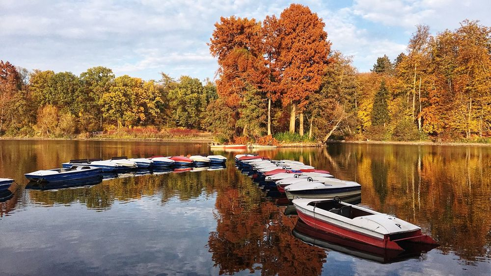 Thebeautyofnature Boats Goldenleaves Fall Autumn Water Plant Tree Sky Cloud - Sky Lake Beauty In Nature