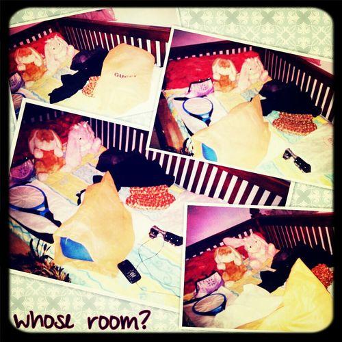 Bored Bedroom Messy Room Just Shoot..