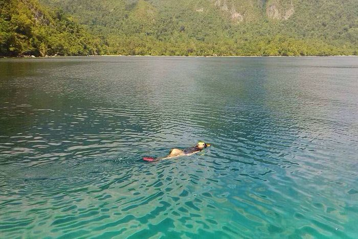 Stop And Breath for a while Beach Ora Ambon salemanvillage