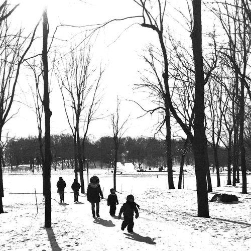 -14 Winter Cold