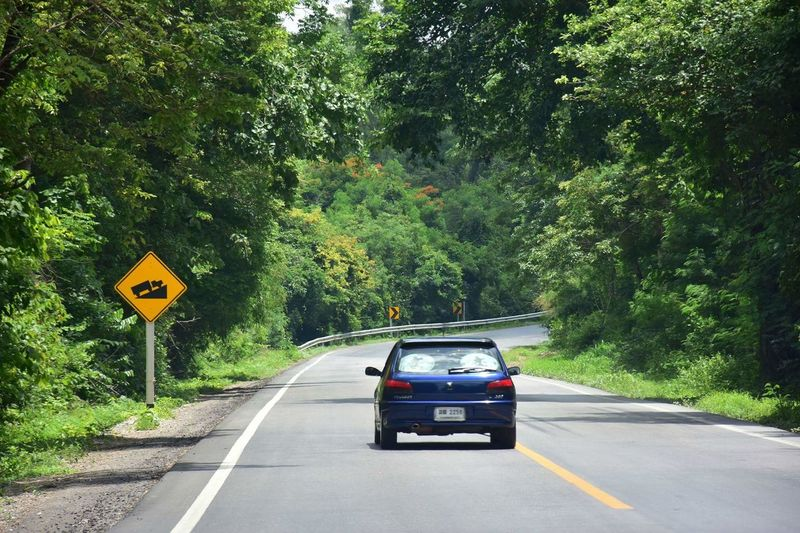 Forest Roadtrip Go Away Travel Car Transportation Road Tree Day Outdoors Road Sign Street The Way Forward