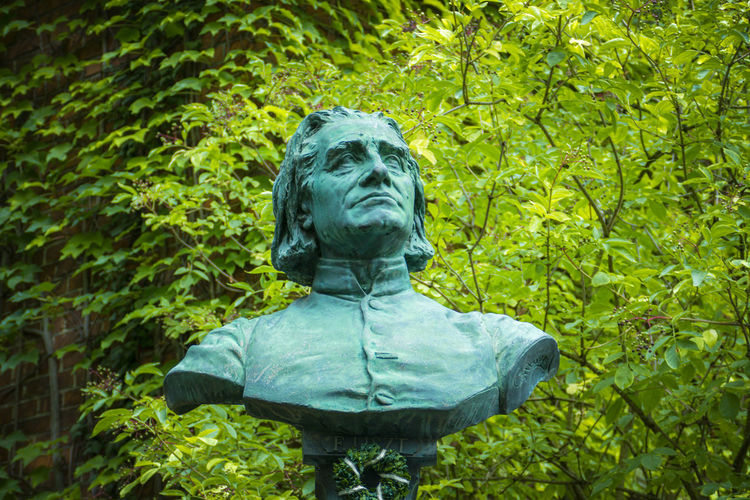 Franz Liszt in Bayreuth Adult Day Foliage Forest Franz Liszt Green Color Growth Hairstyle Leaf Lush Foliage Nature One Person Outdoors Plant Plant Part Rear View Sadness Senior Adult Tree Waist Up