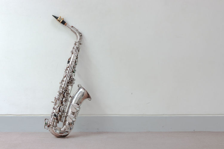 Music Instrument Alto Saxophone Wall - Building Feature Indoors  Music Musical Instrument Arts Culture And Entertainment Copy Space No People Still Life Animal Animal Themes White Background Saxophone Musical Equipment Wind Instrument Studio Shot Flooring Metal Brass Instrument  One Animal Hardwood Floor