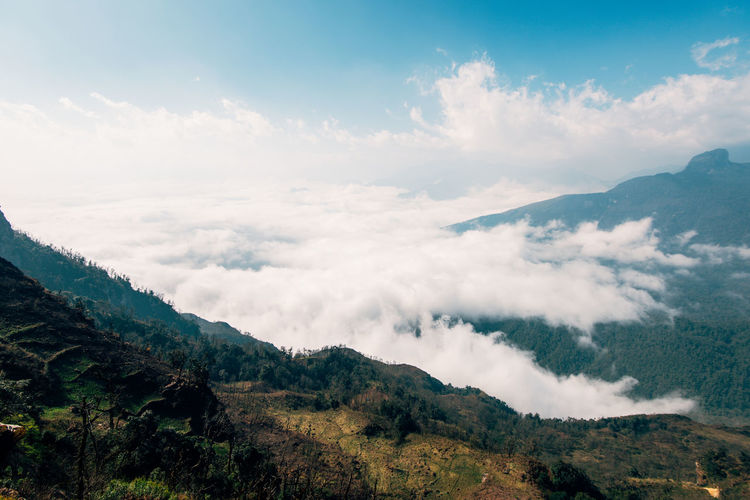 Lao Than mountain Sky Scenics - Nature Beauty In Nature Tranquil Scene Tranquility Cloud - Sky Nature Plant Day Outdoors Mountain Environment Landscape No People Non-urban Scene Idyllic Mountain Range Tree Remote Land The Great Outdoors - 2019 EyeEm Awards