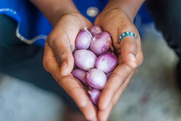 Cropped hands of woman holding onions