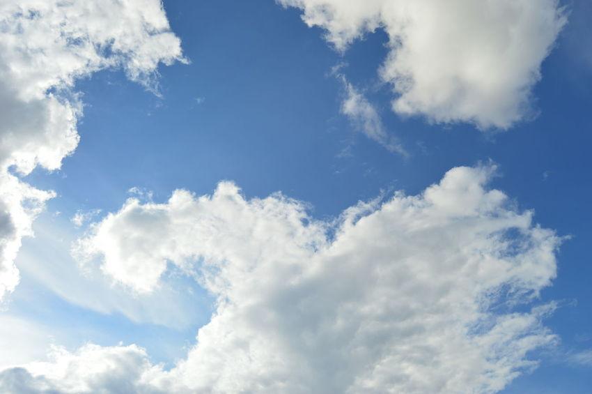 sky Flying Plane Blue Summer Backgrounds Sun Pattern Heaven Bright Wind