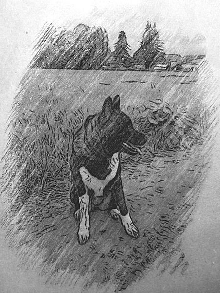 Check This Out Hello World Ganja Maxima V. Katana Ken I Love My Dog