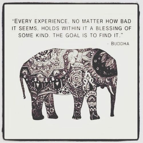 Buddha Elephant Pattern Quote Of The Day