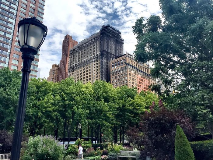 Architecture Building Exterior Tree Built Structure Growth Outdoors City Day No People Low Angle View Sky Skyscraper Central Park Walking Around Cityscapes Streetphotography Urban Skyline Urban Oasis Central Park - NYC Clouds And Sky