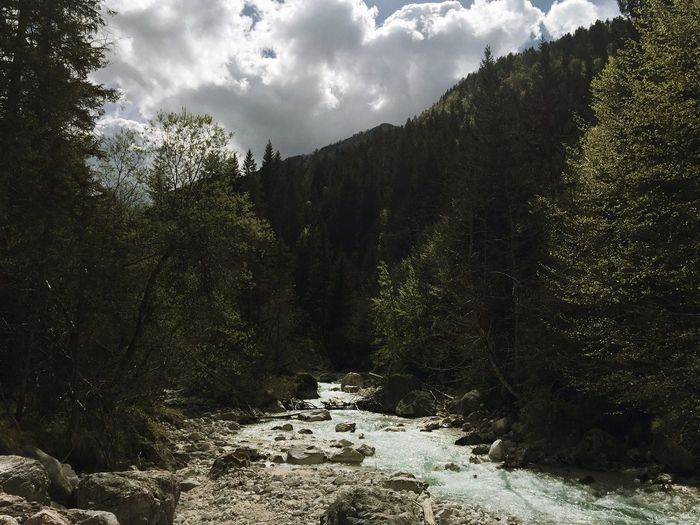 Landscape around Kranjska Gora, Slovenia, May, 2017. Kranjska Gora Vrsic Vrsic Pass Slovenia Landscape River Tree Nature Forest Tranquility No People Stream Beauty In Nature Outdoors Scenics