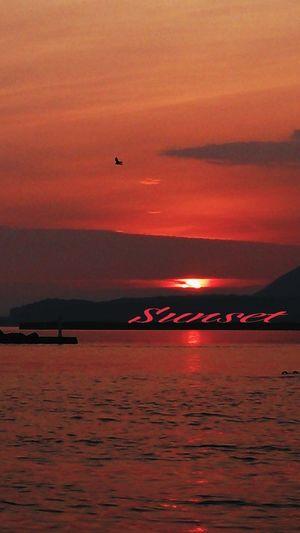 Hot day (^_^;))) Miyazaki Kushima Relaxing Sunset Fresh Air Yuka  Enjoying Life 夕凪 Pray For Kyushu