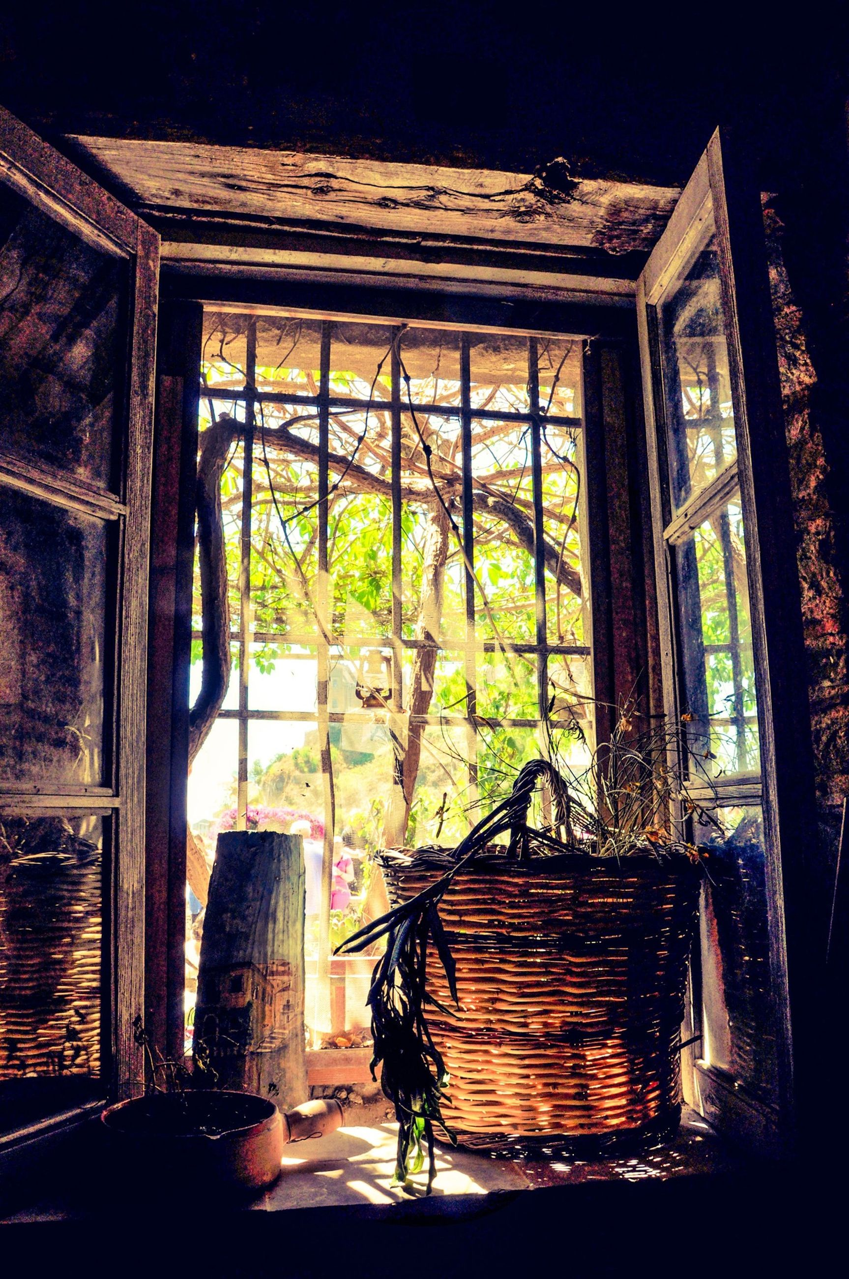 architecture, built structure, building exterior, window, house, indoors, residential structure, glass - material, wood - material, closed, abandoned, residential building, tree, building, door, no people, entrance, sunlight, old, day