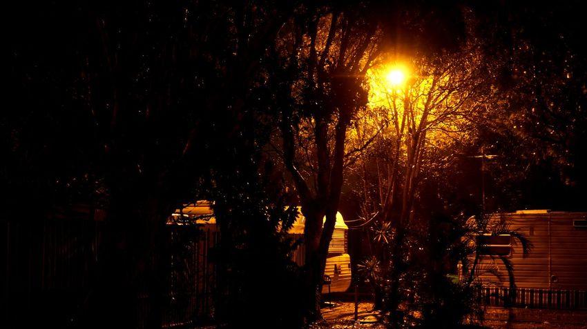 Night scene in a camp ground. Camping Caravan Caravan Park Caravanning Dark Illuminated Lighting Equipment Night No People Outdoors Street Light Tree