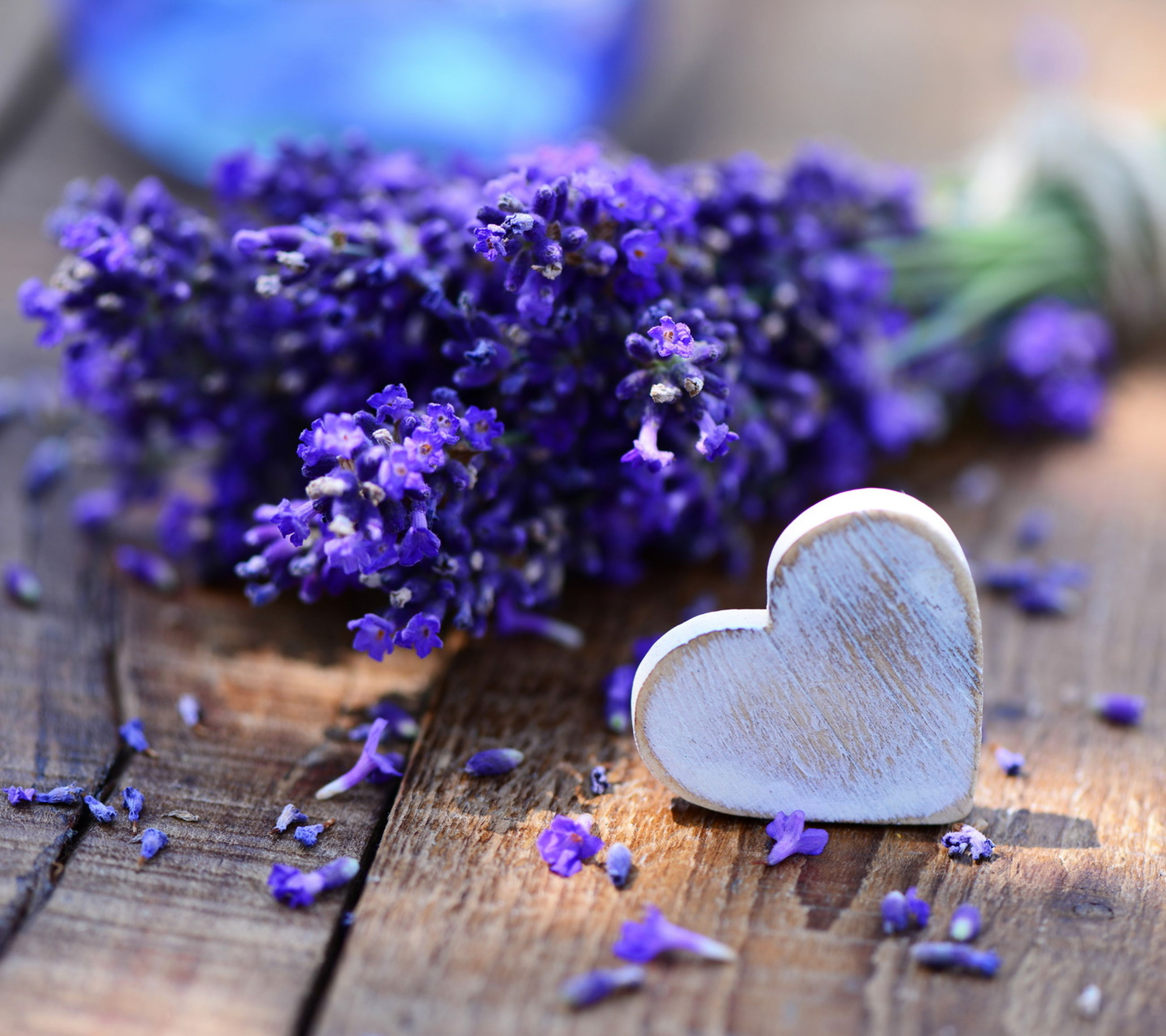 flower, close-up, selective focus, focus on foreground, purple, still life, table, fragility, blue, wood - material, indoors, no people, wooden, day, metal, freshness, high angle view, single object, growth