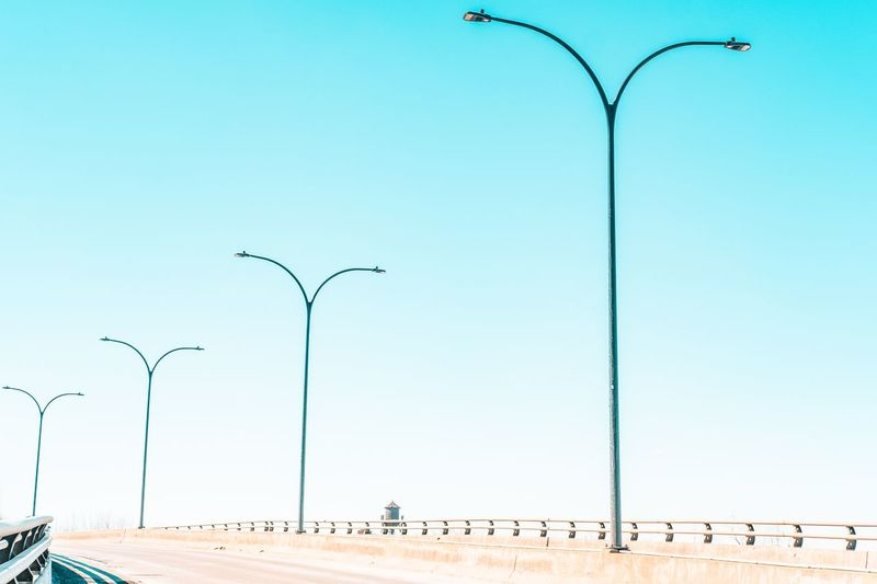 Minimal is enough Blue Skies City Cityscape Architectural Column Photooftheday Fujifilm_xseries Symmetry FUJIFILM X-T2 Street Light Fujifilm Canada Streetphotographer Montréal Minimalist Architecture Minimalism Portraiture Sky Bird Group Of Animals Clear Sky Animal Themes Vertebrate Animal Wildlife Animal Street Light Nature Street Copy Space Low Angle View Flying