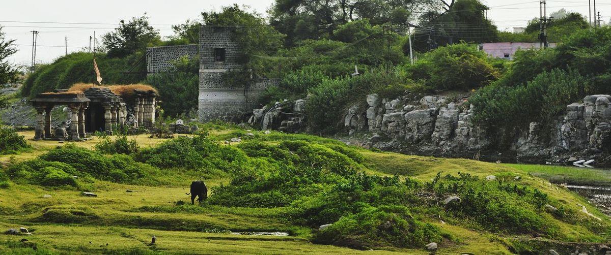 A fort's landscape