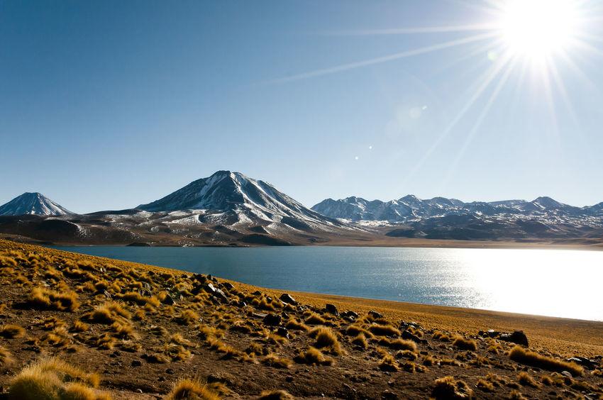 Miscanti Lagoon - Chile Atacama Desert Chile Miscanti Lagoon Lagoon Lake Landscape Miscanti Mountain