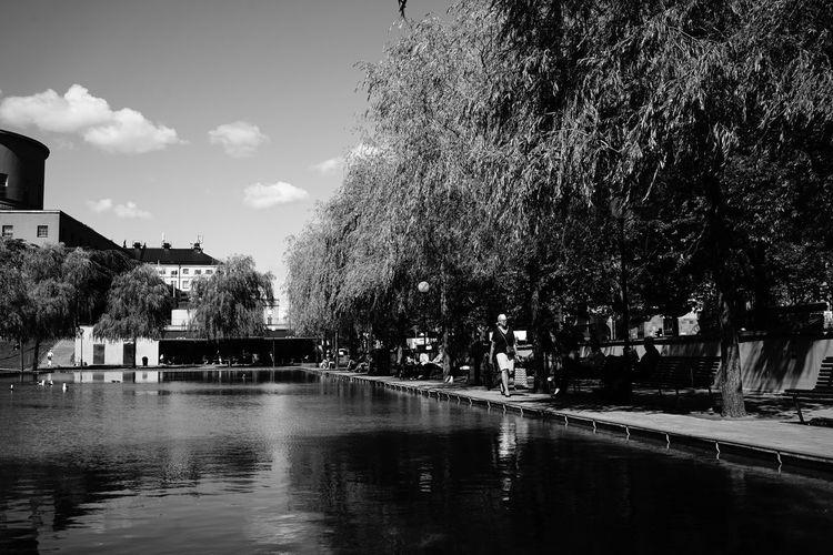 Street Photography Monochrome SONY A7ii Sony FE 35mm F2.8 Water Tree Reflection Outdoors Sky