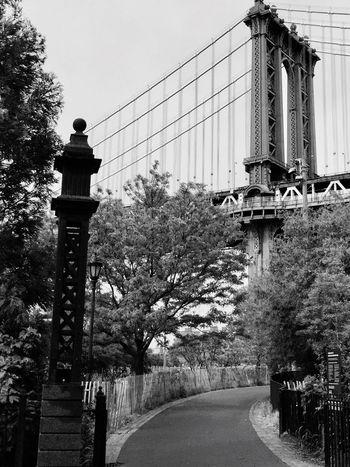 Blackandwhite Black And White Black & White Architecture Bridge Brooklyn Brooklyn Bridge / New York Brooklyn Bridge