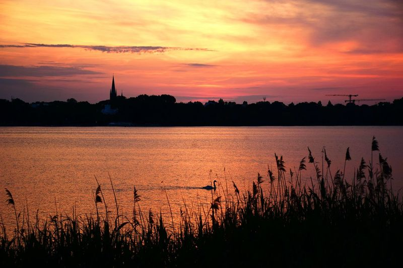Nature Swan On Lake Swan Church Architecture Church Tower Sundown, Nightfall, Close Of Day, Twilight, Dusk, Evening Waterfront Horizon Over Water Tranquil Scene Tranquility Scenics - Nature Romantic Sky Outdoor Photography Day Sunlight Sunshine Sunset And Clouds  Water Sunset Lake Silhouette Reflection Rural Scene Sky Idyllic Scenics Beauty In Nature