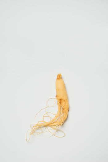 Single Object Food Yellow Close-up Healthy Eating Raw Food Directly Above White Background Ginseng Medicinal Herbs