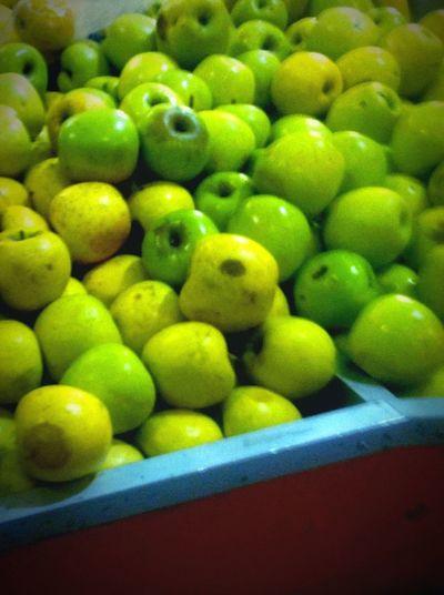 Lemon Lime By Motorola