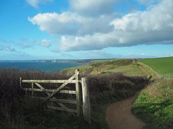 Blue Sea Coastline England, UK Green Hope Cove South Devon Beauty In Nature Blue Coast Path Coastal Day Horizon Over Water Landscape Nature Ocean Outdoors Scenics Sea Seascape Sky South Hams South West Coast Path Tranquil Scene Tranquility Water