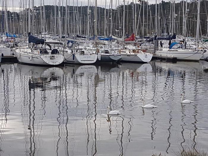 Arzal harbour