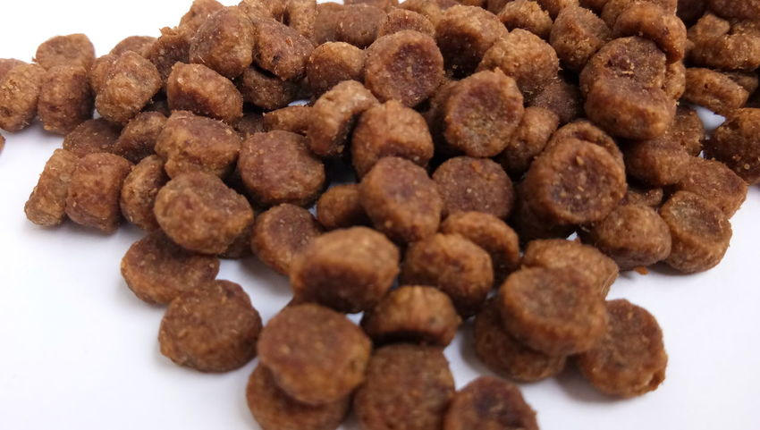 EyeEm Selects food for dog Food Food And Drink Dessert Sweet Food Healthy Eating Close-up No People Christmas Raisin Ready-to-eat Snack Gourmet White Background Indoors  Freshness Day