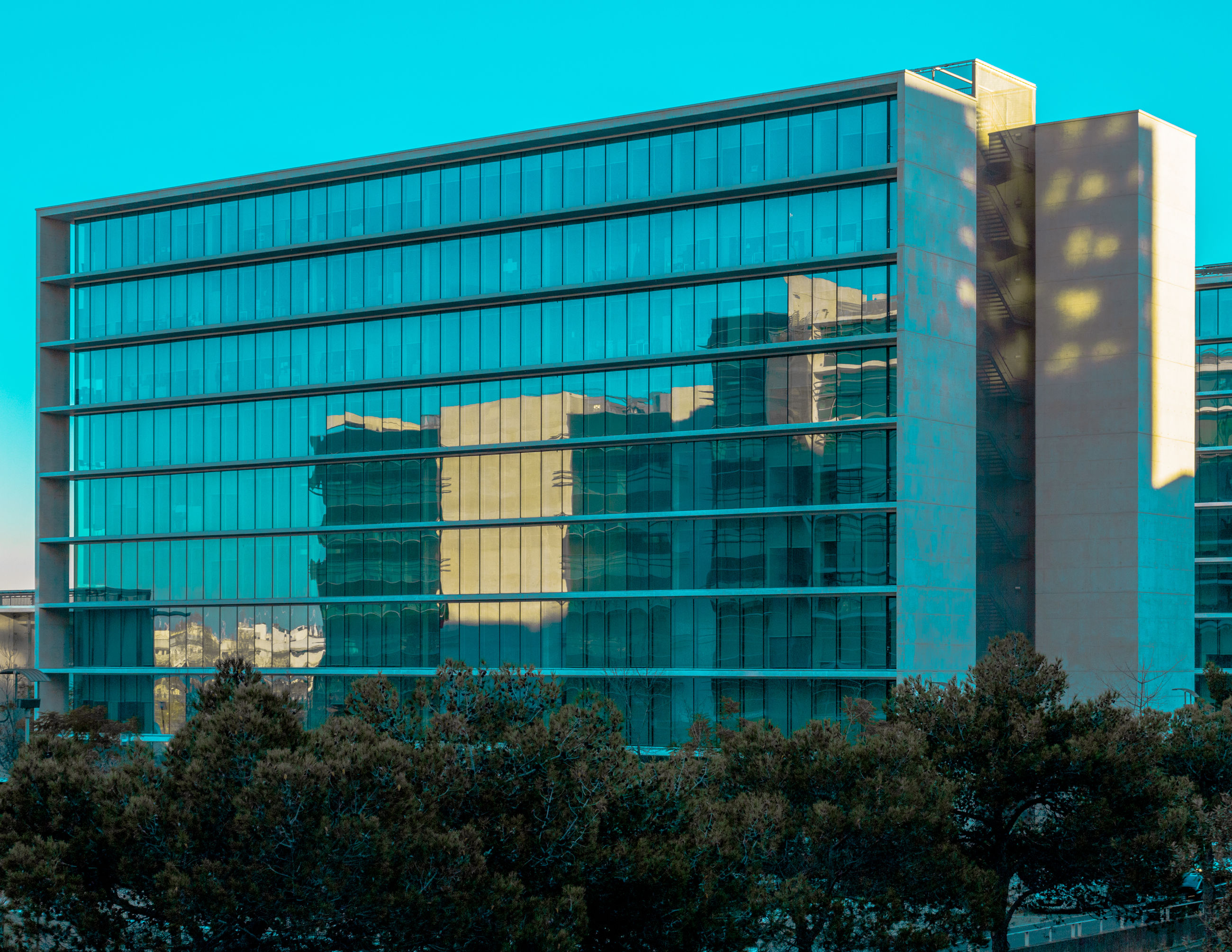 built structure, architecture, building exterior, city, building, no people, office, modern, day, office building exterior, tree, nature, plant, sky, outdoors, glass - material, clear sky, window, blue, reflection, turquoise colored