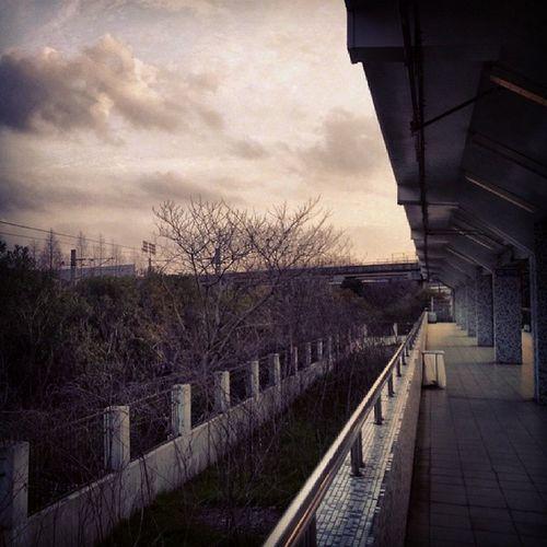 Sutro Platform Ilobsterit Instagram Instamood Likes Bestoftoday Cityscenes Cityofsins City Good