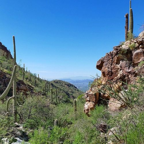 Great Trailrunning / Hiking trail up FingerRockTrail outside Tucson Arizona 5 miles of awesomess MakeItHappen