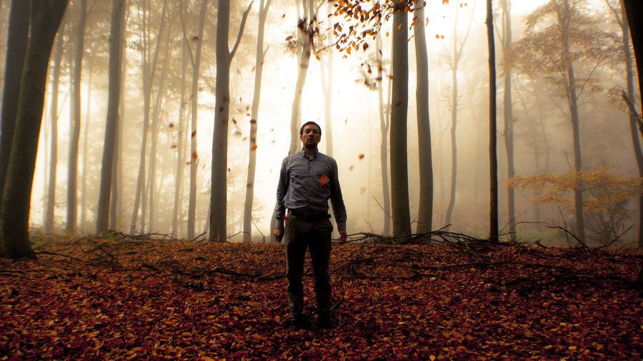 Dry leaves falling on man in forest during foggy weather