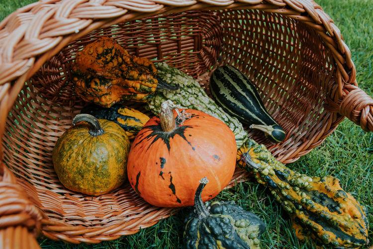 Close-up of pumpkin in basket